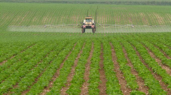 Comment Optimiser L'efficacité Des Produits Phytosanitaires ?