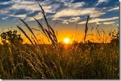 agriculture et transition énergétique-3