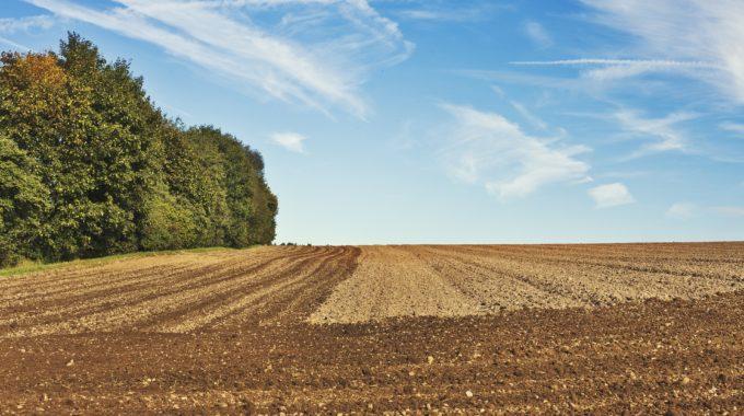 Agriculture: Les Quatre Axes Principaux Du Travail Du Sol