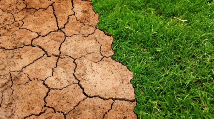 Les Enjeux De La Gestion De L'eau En Agriculture En France : Perspectives D'avenir