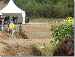 labour agronomique agroécologique