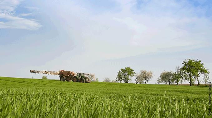 La Diminution Des Produits Phytosanitaires : Quels Impacts Sur La Gestion Des Adventices ?