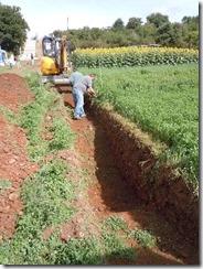 profil cultural agronomie sol yvan gautronneau