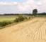 Resilience-exploitations-agricole-changement-climatique